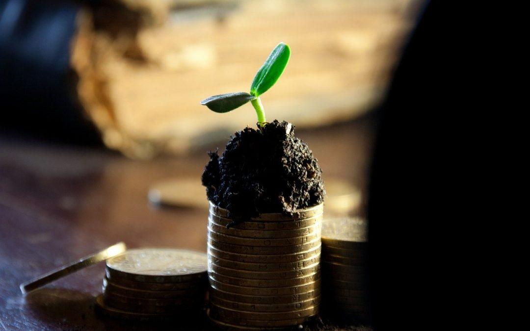 Listado de páginas web con las que ganar dinero